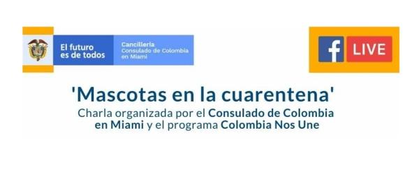 """""""Mascotas en la cuarentena"""", la charla virtual de este miércoles del Consulado de Colombia en Miami"""